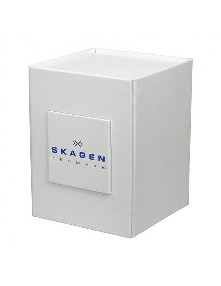 Ceas de dama Skagen 384XSSLGR