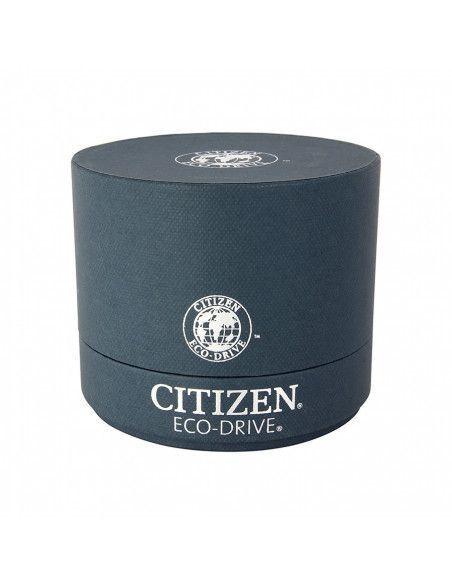Ceas barbatesc Citizen Eco-Drive AO9003-16A