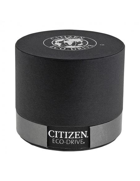 Ceas de dama Citizen Eco-Drive EW3144-51A