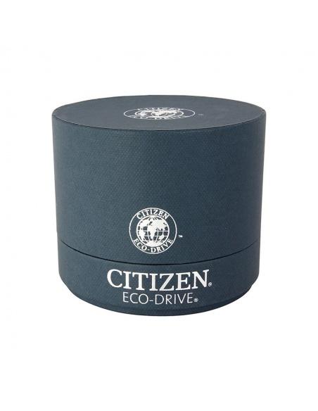 Ceas barbatesc Citizen Eco-Drive AO9003-08E