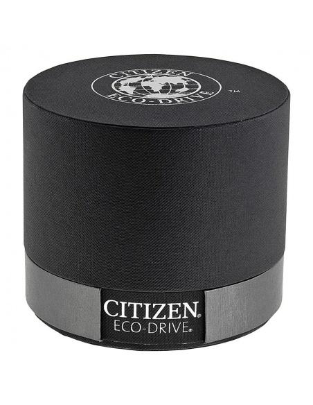 Ceas de dama Citizen Eco-Drive EW9920-50E