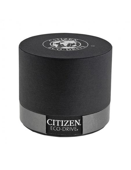 Ceas barbatesc Citizen Perpetual Calendar BL5400-52A