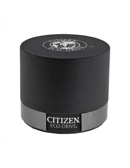Ceas de dama Citizen Eco-Drive EW8282-09P