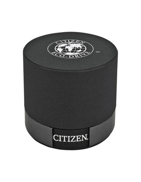 Ceas barbatesc Citizen Calibre BL8000-54L