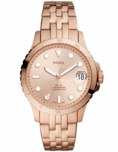 Ceas de dama Fossil FB-01 ES4748