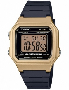 Ceas barbatesc Casio Collection W-217HM-9AVEF