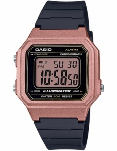 Ceas barbatesc Casio Collection W-217HM-5AVEF
