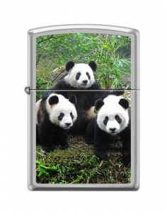 Bricheta Zippo 1779 3 Panda Bears
